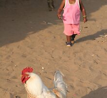 Girl chase chicken by eddiebotha