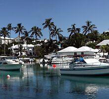 Panoramic view of Flatts Village, Hamilton Parish, Bermuda by John Gaffen