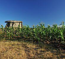 dolmen and corn by neil harrison