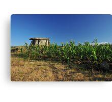dolmen and corn Canvas Print