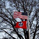 Flags Flying High by Debbie Robbins