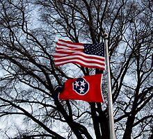 Flags Flying High by Debbie Robbins