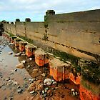 Low Tide Groyne by John Hare
