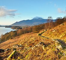 Looking on to Derwentwater by Jacqueline Wilkinson