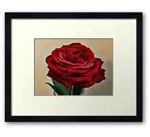 My Love is like a Red Red Rose Framed Print