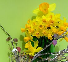 Family Of Dafodils by NatureGreeting Cards ©ccwri
