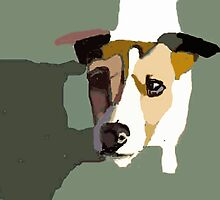 Jack Russel in the sun by Michael Werner