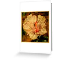 The Beauty Of Aging ~ Part Three Greeting Card