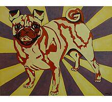 Villainous Pow: Pug Style Pop Art Photographic Print