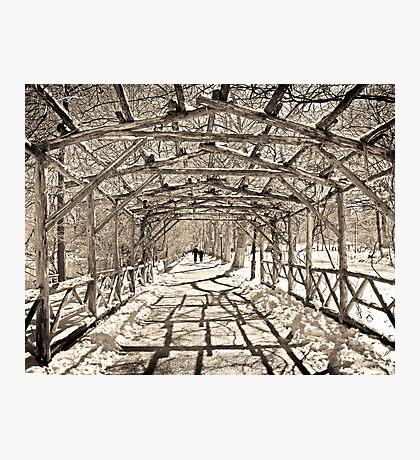 Central Park, New York Photographic Print