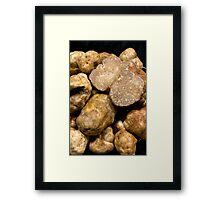 Oregon White Truffles # 3 Framed Print
