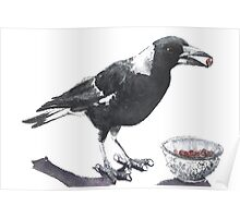Magpie Thief Poster