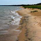 Lake Michigan Beach by Joy Fitzhorn