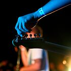 tuning. rockpool 2011, bicheno by tim buckley | bodhiimages