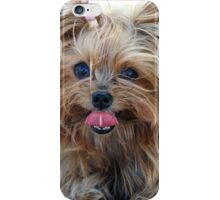 Cute Yorkshire Terrier Iphone Case iPhone Case/Skin