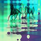 Equines & Colours. by Vitta