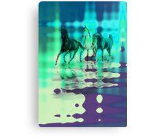 Equines & Colours. Canvas Print