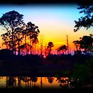 Sunset Over Ilona's Pond by Julie Everhart