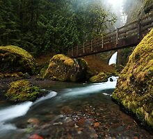 Footbridge over Tanner Creek by Tula Top