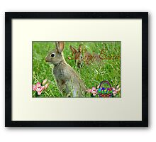 Happy Easter - Wild Bunnies - NZ Framed Print