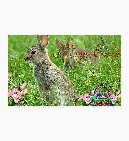 Happy Easter - Wild Bunnies - NZ Photographic Print