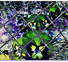 layering... by dabadac