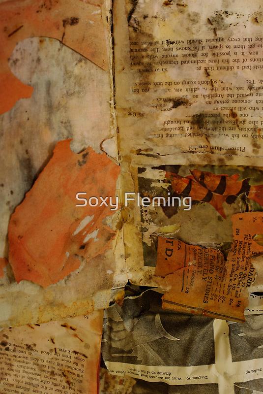 catfish by Soxy Fleming