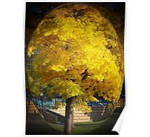 Captivating Yellow Tree Poster