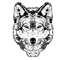Wolf Black Photographic Print