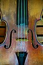 French Violin by Renee Hubbard Fine Art Photography