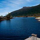 Lake St.Clair  by Patrick Robertson