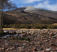 Scald Hill in Northumberland National Park by Harry Purves