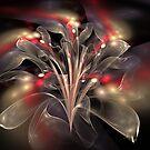 Bloom Fascination by innacas