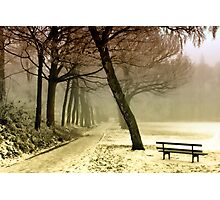 Cold Tranquility Photographic Print