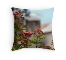 The Big Old Barn Throw Pillow