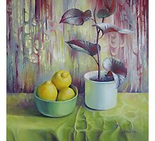 Still life with lemons Photographic Print