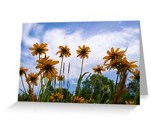 I Want to Soak Up Some Sun Greeting Card