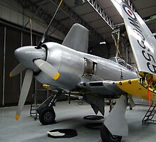 Hawker Sea Fury(WG655) by Andy Jordan