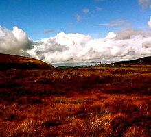Landscape on Wicklow Mountains by naddyt
