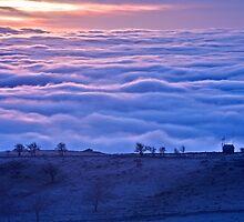 Fog - Fm by Paul Whittingham
