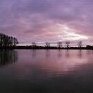 Flooded Rhine, Wijk bij Duurstede  by Nederland Panorama