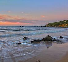 Back Beach Scene, Australia by Patrick Reid