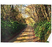 A Very Long Lane Poster