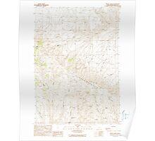USGS Topo Map Oregon Brady Creek 279116 1990 24000 Poster