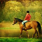 A Gentle Canter by Aj Finan