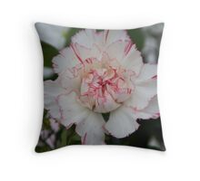 White and Red Carnation Throw Pillow