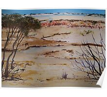 Coorong View Poster