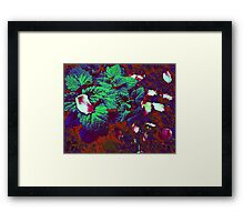 Nip and Pedals 1 Framed Print