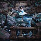 Swanlake by jamari  lior