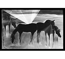 After the Gold Rush - Ghost Ponies Photographic Print